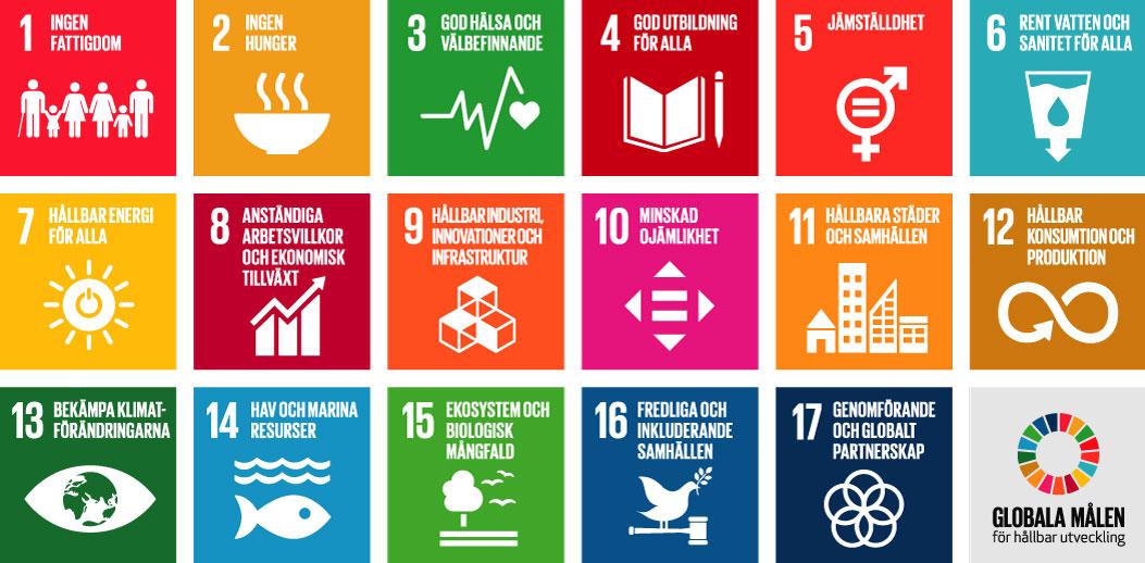 hållbar utveckling i skolan skolverket
